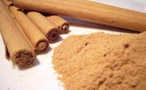 cinnamon-exporter-supplier-3