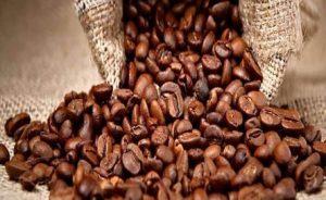 coffee-bean-exporter-supplier-1
